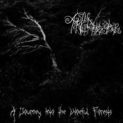 Reviews for A Pale December - A Journey into the Woeful Forests