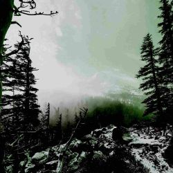 Reviews for Abandoned by Light - In Praise of Shadows Past
