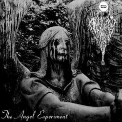 Reviews for Abandoned by Light - The Angel Experiment