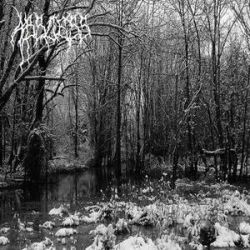 Review for Abscess - Abscess