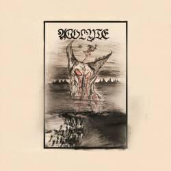 Reviews for Acolyte (USA) - Divine Falsehood
