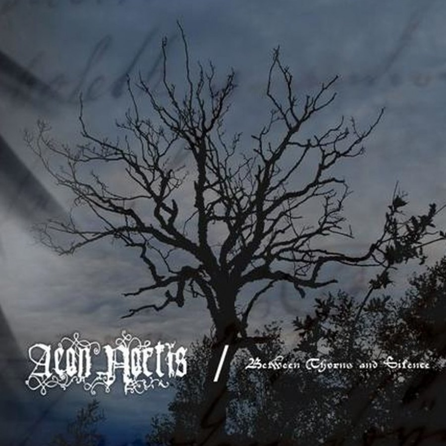 Review for Aeon Noctis - Between Thorns and Silence