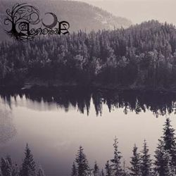 Review for Agnosia - Forest