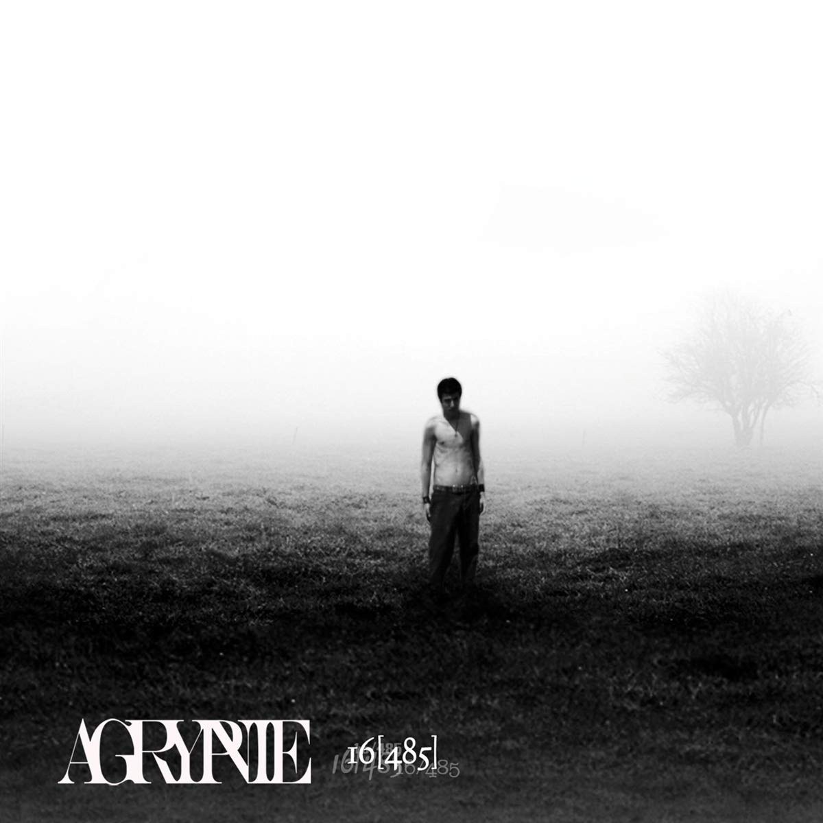 Review for Agrypnie - 16[485]