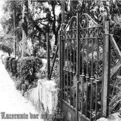 Review for Akroma Penuriante - Lacerante Dor Espasma