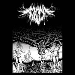Review for Aliicide - First Prayer