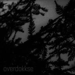 Reviews for Alldrig - Overdokkse