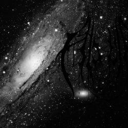 Aludra - Mass Stellar Graves