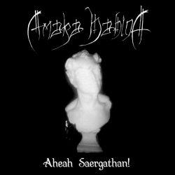 Review for Amaka Hahina - Aheah Saergathan!
