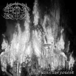 Review for Amnion - Burn the Forest
