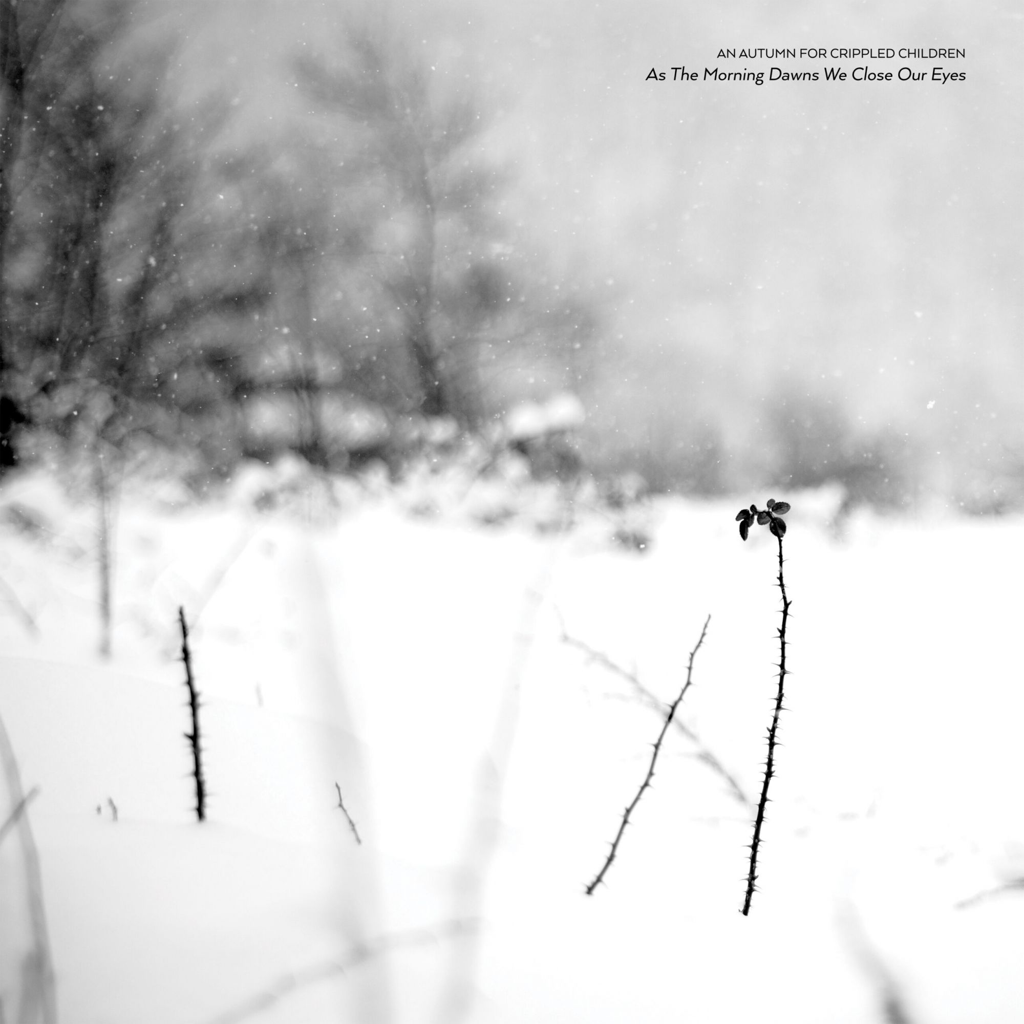 Reviews for An Autumn for Crippled Children - As the Morning Dawns We Close Our Eyes