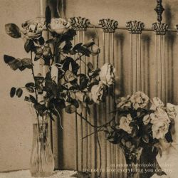 Reviews for An Autumn for Crippled Children - Try Not to Love Everything You Destroy
