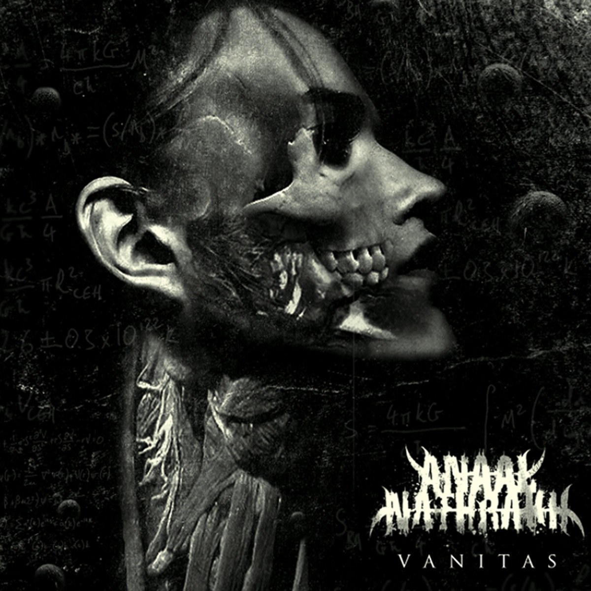 Review for Anaal Nathrakh - Vanitas