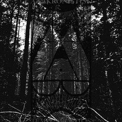 Review for Anakronistisk - Tempus Hostilis