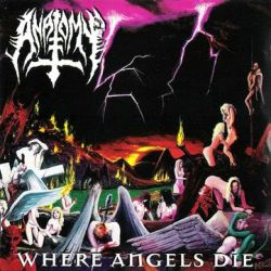 Review for Anatomy - Where Angels Die