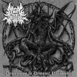 Review for Angel Splitter - Descension to Demonic Paraphilia
