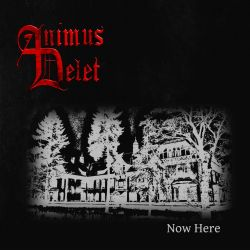 Review for Animus Delet - Now Here