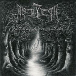 Review for Arathyr - Path of Abomination