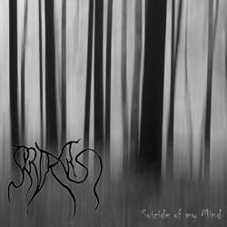 Review for Araxas - Suicide of My Mind