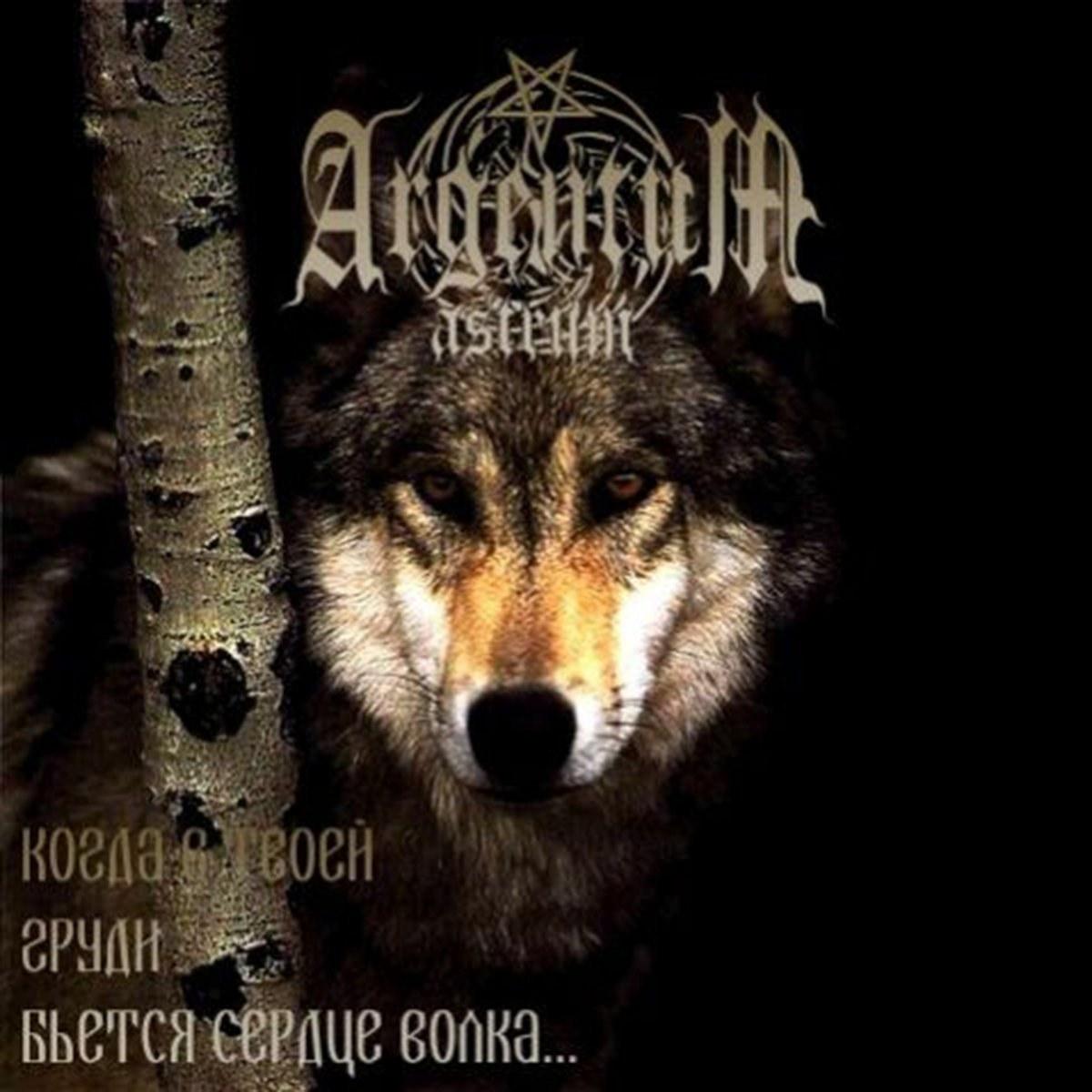 Review for Argentum Astrum - Когда в твоей груди бьётся сердце волка...