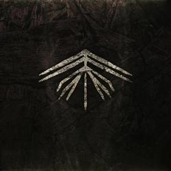 Review for Arkhum - Earthling