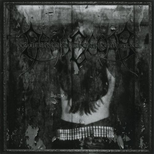 Review for Armagedda - Volkermord - The Appearance