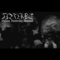 Reviews for Arvet - Elävän Kuoleman Aamuna
