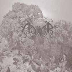 Review for Arvorar - Fragments of Solitude