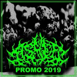 Ashed - Promo 2019