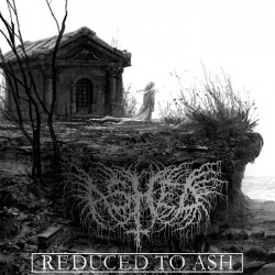 Ashed - Reduced to Ash