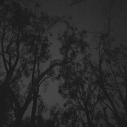 Reviews for Atel - Cold Misanthropic Wilderness