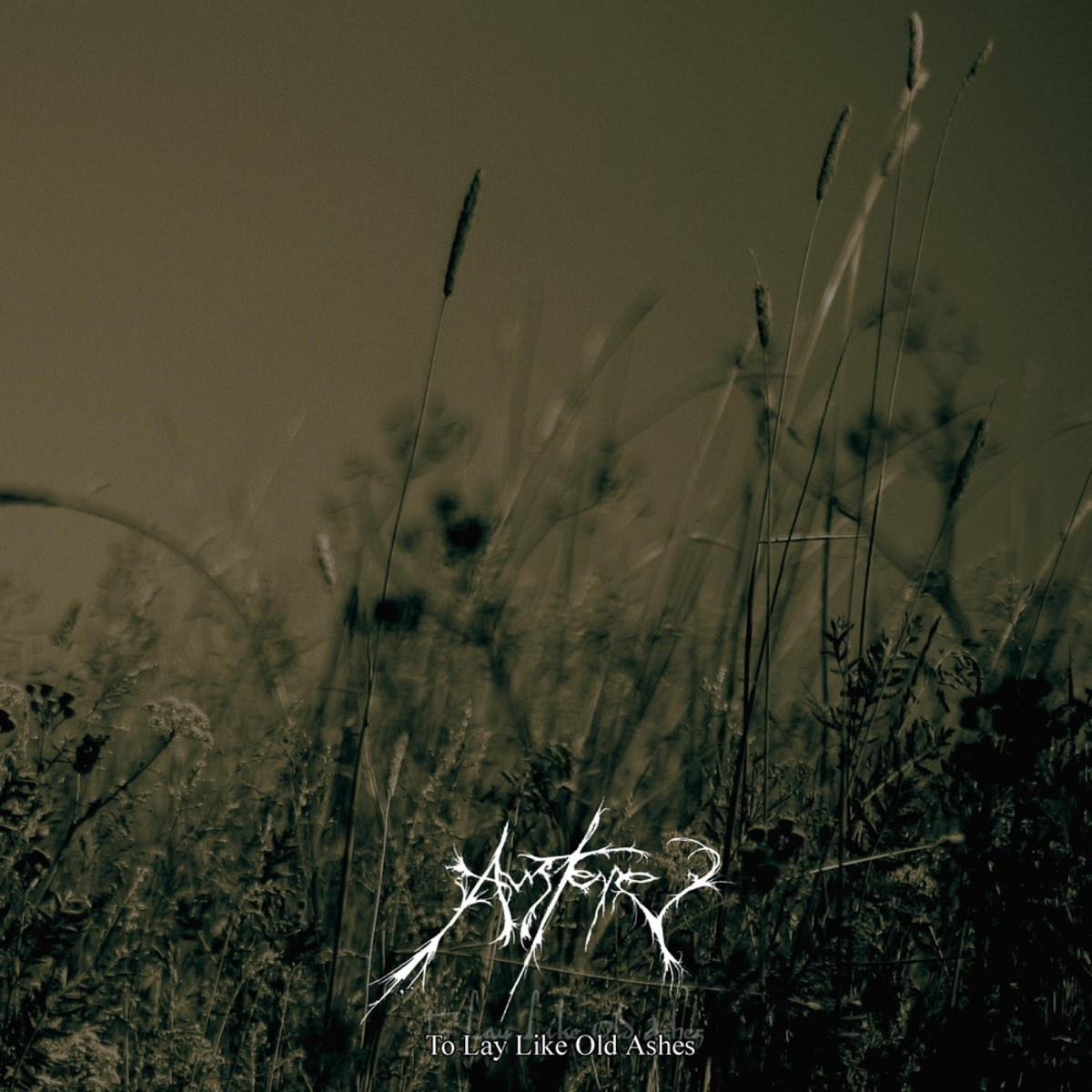 Review for Austere - To Lay Like Old Ashes