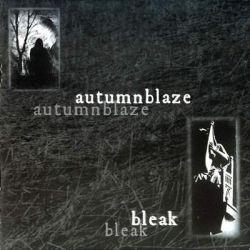 Review for Autumnblaze - Bleak