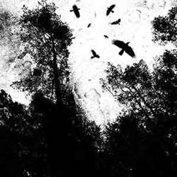 Reviews for Autumn's Dawn - Autumn's Dawn