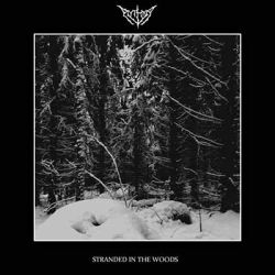 Review for Aythya - Stranded in the Woods