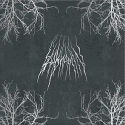 Review for Baalshamin - Collapse