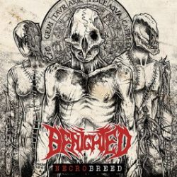 Review for Benighted (FRA) - Necrobreed