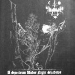 Review for Beqanatas - A Spectrum Under Night Shadows