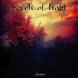 Review for Bereft of Light - Hoinar