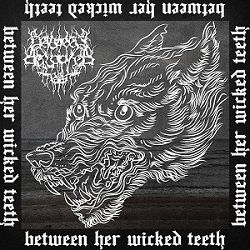 Review for Between Her Wicked Teeth - Between Her Wicked Teeth