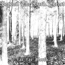 Review for Beyond the Dark Forest - Far, Far North