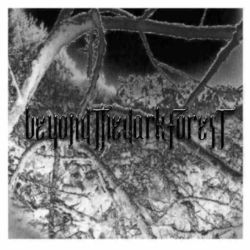 Review for Beyond the Dark Forest - The Frost