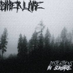 Review for Bitter Lake - Distortions in Sombre