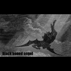 Review for Black Boned Angel - Heaven Cast Darkness