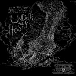 Review for Black Cyclone - Under Your Hoof