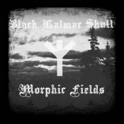Review for Black Kalmar Skull - Morphic Fields
