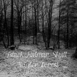 Review for Black Kalmar Skull - Winter Forest