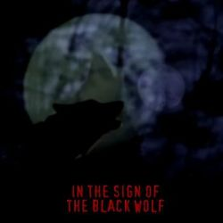 Review for Black Wolf (ARG) - In the Sign of the Black Wolf