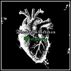 Review for Blackend Horizon - Peripherie