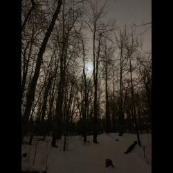 Reviews for Blackest Winter Black - The Blackest Winter Black